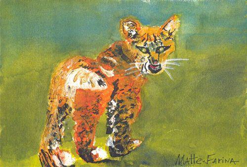 Bobcat,Claire Marie